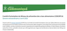 Communiqué du Comité d'orientation du Réseau de prévention des crises alimentaires : Session extraordinaire du 6 avril 2020