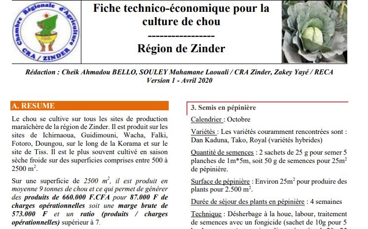 Fiche technique: Culture du chou à Zinder (Niger)