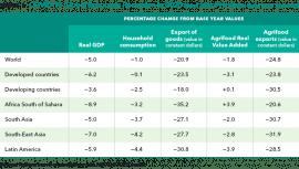 Article: Covid-19 et augmentation de la pauvreté et de l'insécurité alimentaire dans les pays en voie de développement