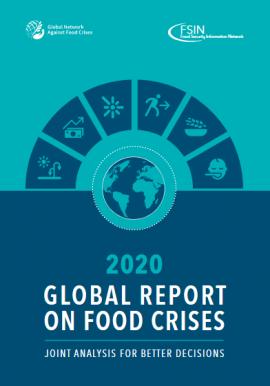 Rapport - Rapport mondial sur les crises alimentaires 2020