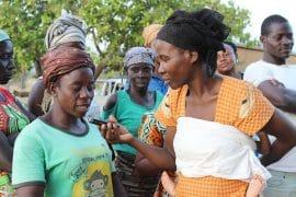 Bulletin de veille n°381 - Genre et développement rural en Afrique de l'Ouest et du Centre