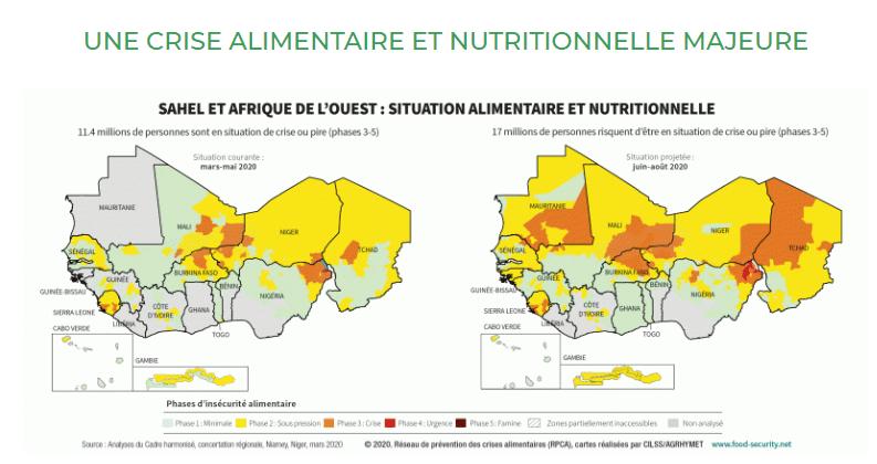 Plateforme d'information - Crise alimentaire et nutritionnelle 2020