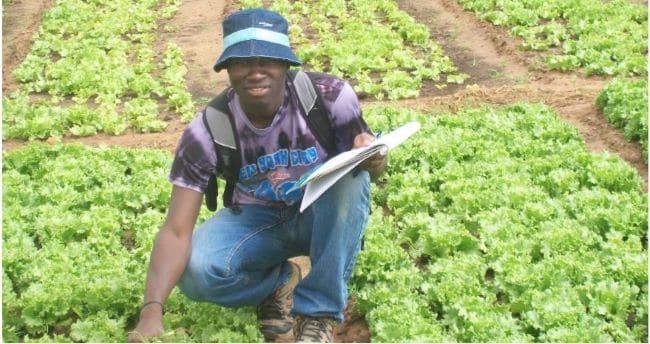 Article - La pandémie du COVID-19 : une légitimation de la promotion de l'agriculture urbaine