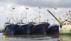 Article: Alerte rouge sur la pêche sénégalaise