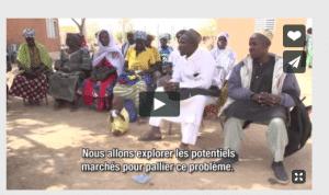 Film: Création d'unités de transformation