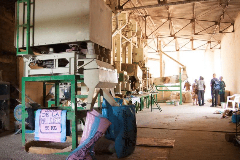 Article - A regional response to help avoid rice shortages in West Africa