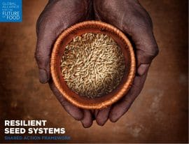 Shared Action Framework - Resilient Seed Systems