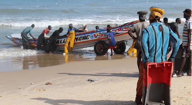 Article - Sénégal : les usines de farines de poisson menacent la sécurité alimentaire