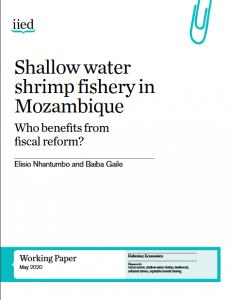 Article - Améliorer la durabilité de la pêche par des réformes fiscales : l'exemple du Mozambique
