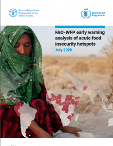 Report - FAO-WFP early warning analysis of acute food insecurity hotspots July 2020