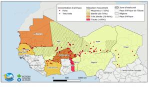 Bulletin mensuel de suivi de l'impact de la COVID19 sur les ménages pastoraux et agropastoraux – Juin 2020