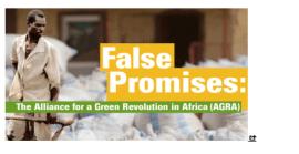 Article - Fausses promesses: la «révolution verte en Afrique» échoue à ses propres conditions