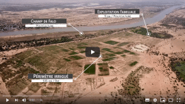 Etude et video - Diagnostic prospectif de terroir : Sagne Diery (Guidimakha)