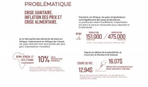 Infographie - Covid-19 et crise alimentaire en Afrique