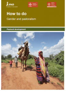 Rapport - How to do Gender and pastoralism
