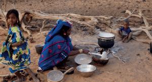 Bulletin mensuel de veille - La vulnérabilité des exploitations Agropastorales membres de l'APESS