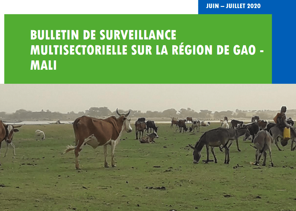 Bulletin de surveillance multisectorielle de Gao-Mali - Juin-Juillet 2020