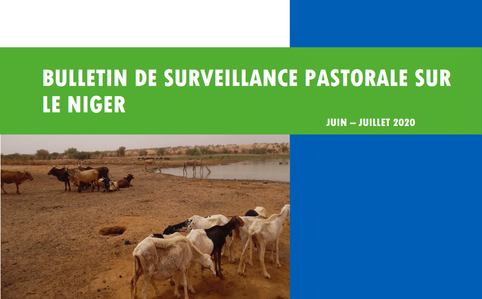Bulletin de surveillance pastorale - Niger, juin-juillet 2020