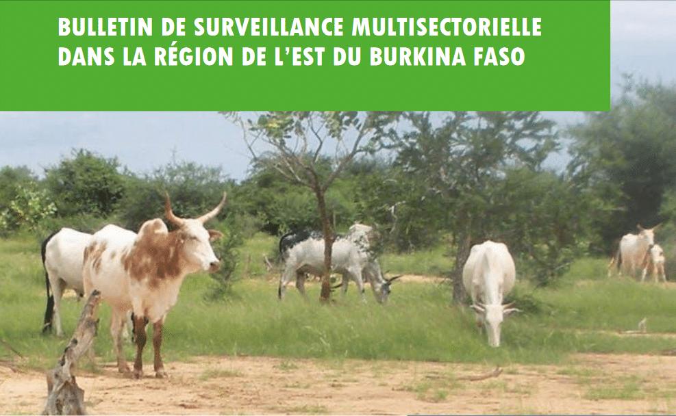 Bulletin de surveillance multisectorielle - Région Est du Burkina Faso,  Juin-Juillet 2020