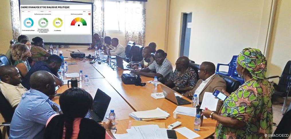 Entretien - « Cadre d'analyse du leadership en matière de gouvernance SAN (C-GovSAN) »