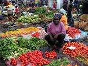 Article - Covid-19 & Sécurité alimentaire | Des pertes alimentaires accrues en Afrique