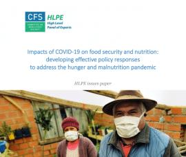 Document de travail - Impacts of COVID-19 on food security and nutrition: developing effective policy responses to address the hunger and malnutrition pandemic