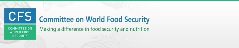 CFS High-Level Special Event on Global Governance of Food Security and Nutrition