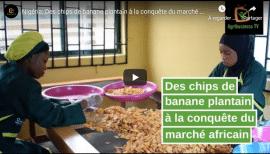 Video - Nigéria: Des chips de banane plantain à la conquête du marché africain