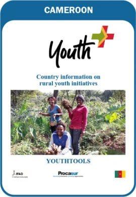 Rapport - Youthtools ou Jeunesoutils Cameroun