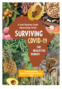 Guide - Surviving Covid-19 - The neglected remedy