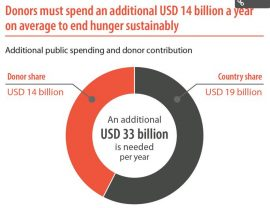 Article - Donors must double aid to end hunger - and spend it wisely