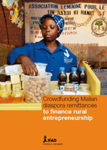 Case study : Crowdfunding Malian diaspora remittances to finance rural entrepreneurship