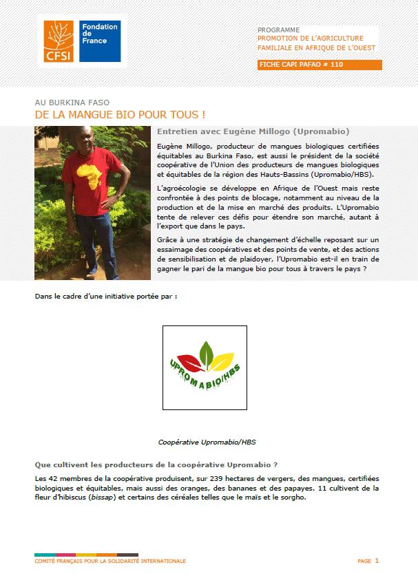 Fiche d'entretien : Au Burkina Faso, de la mangue bio pour tous