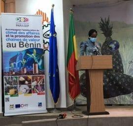 Communiqué de presse - L' Ananas pain du sucre du Bénin certifié Indication Géographique Protégée