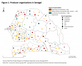 Post de blog - Boosting African agricultural growth and transformation: The importance of producer organizations