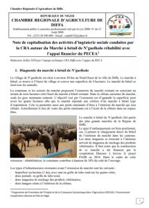 Note de capitalisation des activités d'ingénierie sociale conduites par la CRA autour du Marché à bétail de N'guelkolo (Niger)