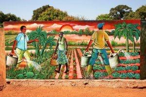 Note de lecture - IPES FOOD - Valeurs ajoutées de l'agroécologie : Déverrouiller le potentiel de transition en Afrique de l'Ouest