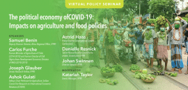 Séminaire - The political economy of Covid-19: Impacts on agriculture and food policies