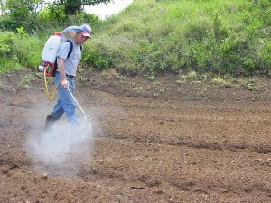 Article - Dramatic rise in global pesticide poisonings