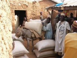 Nigeria : le retour à la terre après le tout pétrole