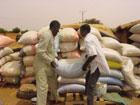 Note d'Information sur la Sécurité Alimentaire - Avril 2009
