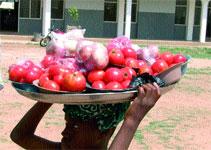 Intégration sous-régionale : La tomate réunit Burkinabè et Ghanéens
