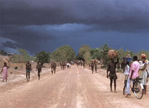 Secteur agricole: 12 milliards de FCFA pour lutter contre l'insécurité alimentaire