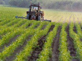 FAO : Vers une régulation des régimes fonciers