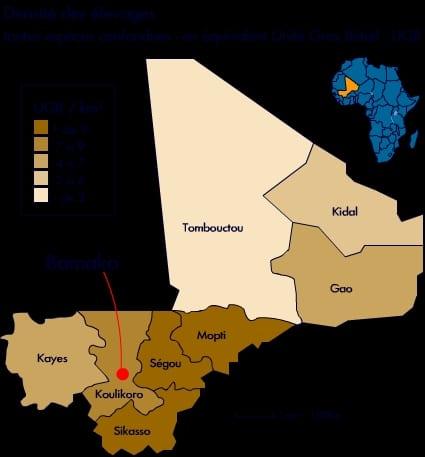 Pastoralisme en Afrique de l'Ouest : Le réseau « Billital Maroobé » sonne l'alerte !