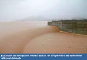 Souss : les pluies n'ont pas apaisé les craintes des agriculteurs