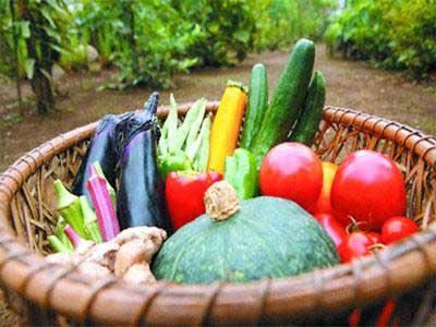 La sécurité alimentaire sera un axe majeur de la politique de développement