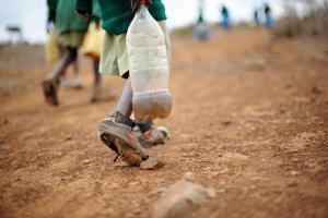 Au Kenya, des éleveurs des régions arides reçoivent une assurance antisécheresse