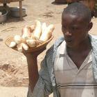 Les cultures GM peuvent-elles nourrir les pauvres ?
