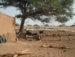Lutte contre la pauvreté et les inégalités dans le processus de décentralisation malien. Enseignements issus d'une analyse de pratiques de quelques collectivités locales et projets au Mali